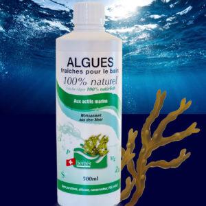 Algues Fraîches Ligne du Berger Laboratoires Bioligo