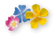 Fleurs de Bach Laboratoires Bioligo
