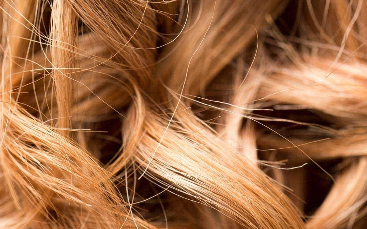 Analyse des cheveux Cure d'Oligoéléments Laboratoires Bioligo