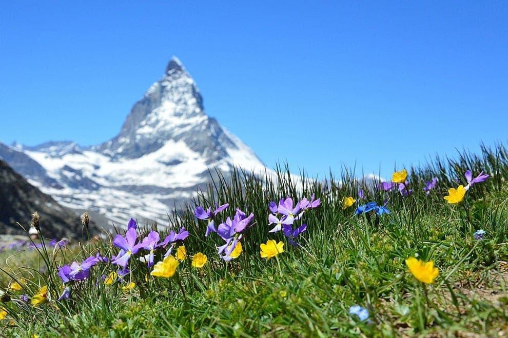 Matterhorn Cervin Suisse Notre Philosophie Laboratoires Bioligo