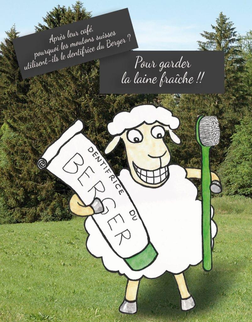 Le dentifrice du Berger... Pour garder la laine fraîche!!