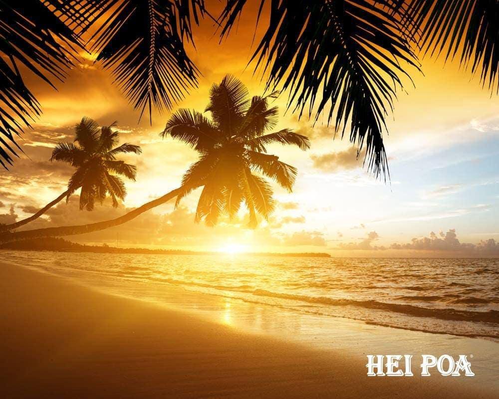 Plage polynésienne Sunset Hei Poa Laboratoires Bioligo