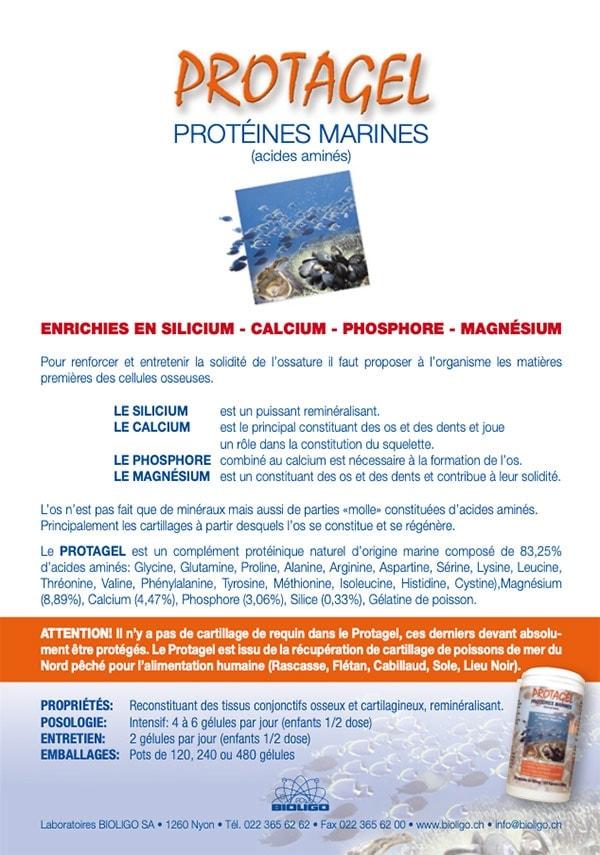 Protagel (PDF) Protéines marines Acides aminés Laboratoires Bioligo