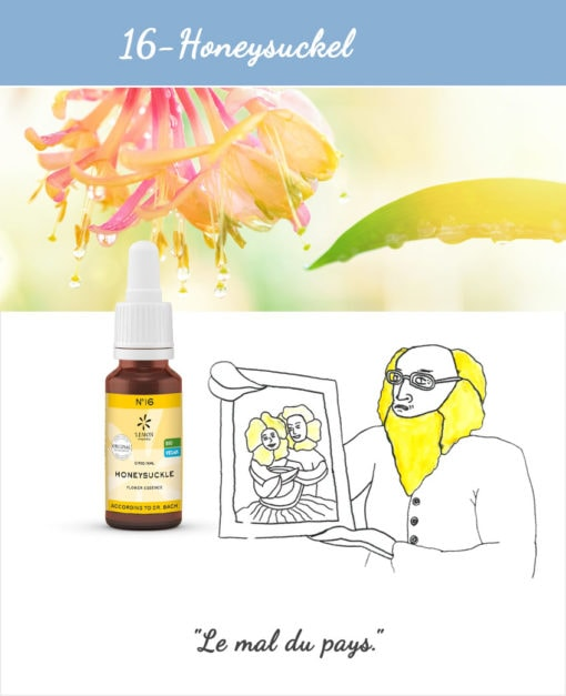 16. Honeysuckle - Fleur de Bach Bio 20ml Laboratoires Bioligo