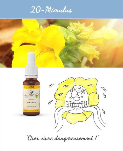 20. Mimulus - Fleur de Bach Bio 20ml Laboratoires Bioligo