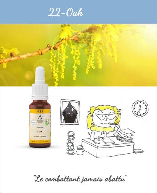 22. Oak - Fleur de Bach Bio 20ml Laboratoires Bioligo