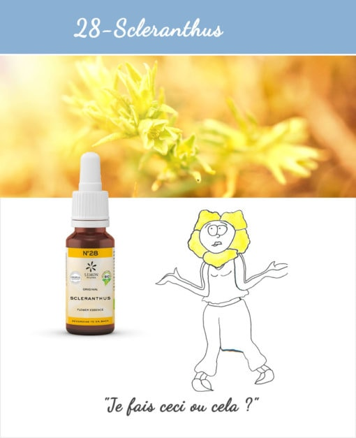 28. Scleranthus - Fleur de Bach Bio 20ml Laboratoires Bioligo
