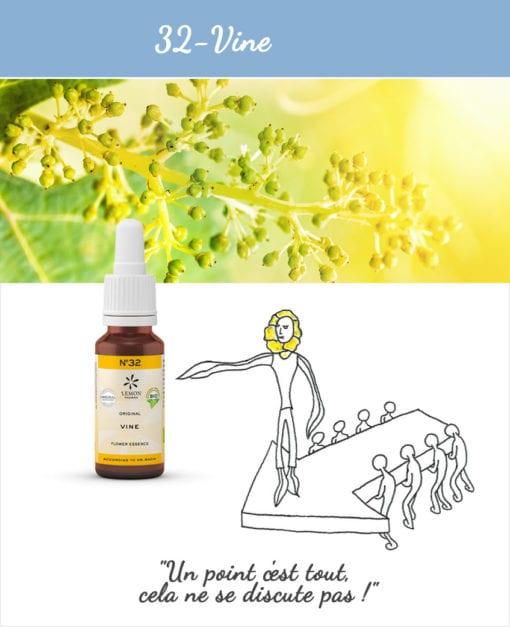 32. Vine - Fleur de Bach Bio 20ml Laboratoires Bioligo