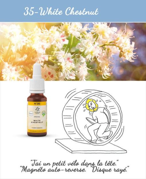35. White Chestnut - Fleur de Bach Bio 20ml Laboratoires Bioligo