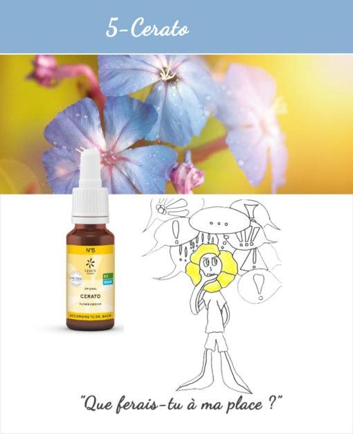 5. Cerato - Fleur de Bach Bio 20ml Laboratoires Bioligo
