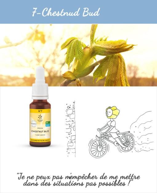 7. Chestnud - Fleur de Bach Bio 20ml Laboratoires Bioligo